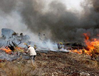 Dimite una ministra portuguesa por la gestión con los incendios