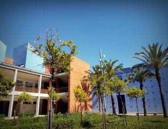 Trescientos veinticinco nuevos estudiantes admitidos en los Grados del Campus de Gandia de la UPV