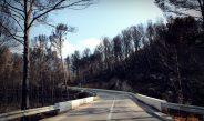 El Ayunt. de Gandia y la política de prevención forestal