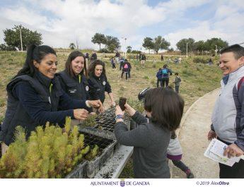 Dia Arbre Gandia: Gimcana per Anella Verda (Pineda de Santa Anna)