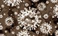 China dice haber desarrollado «con éxito» una vacuna contra el coronavirus